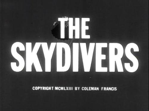 skydivers01